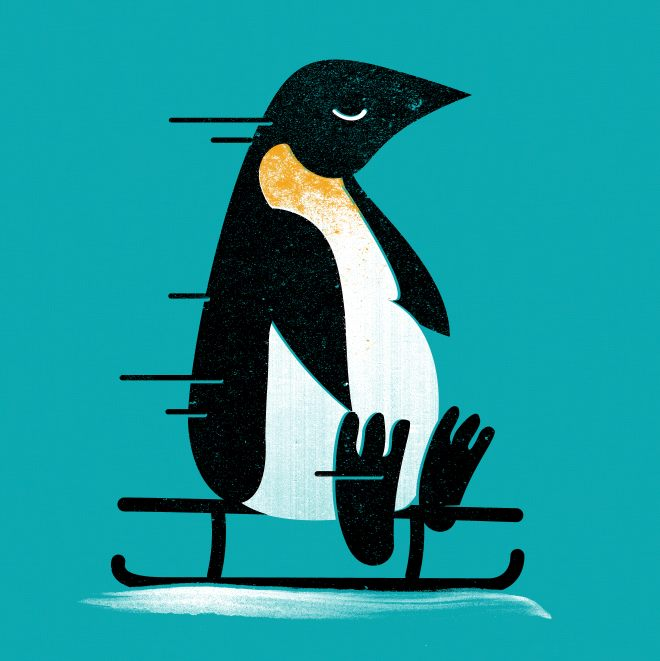 Sledding pinguin